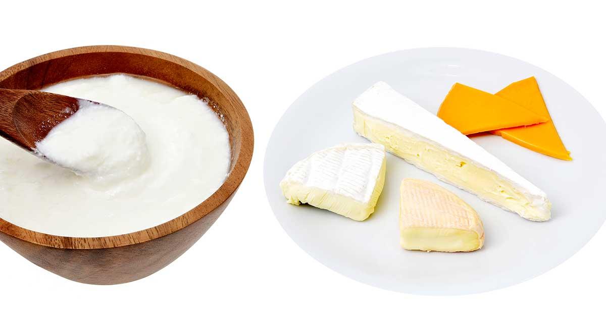 食料品備蓄〜チーズ・ヨーグルト
